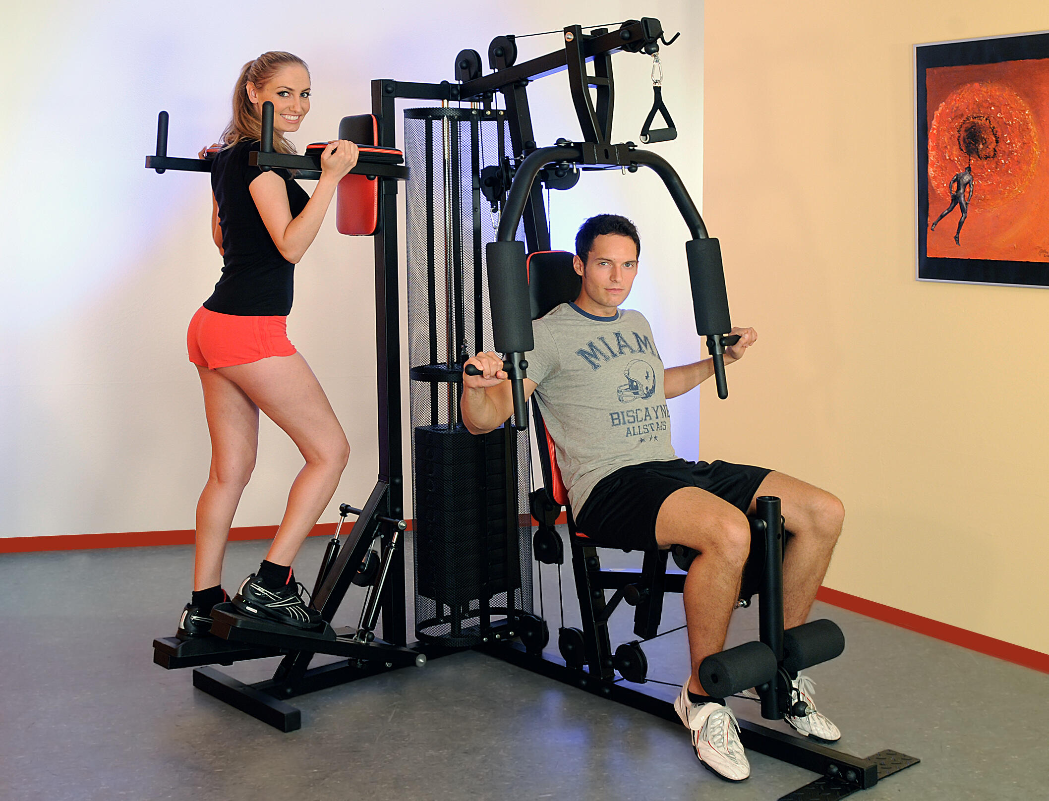 Aparat Multifunctional Fitness Profi Center de Luxe